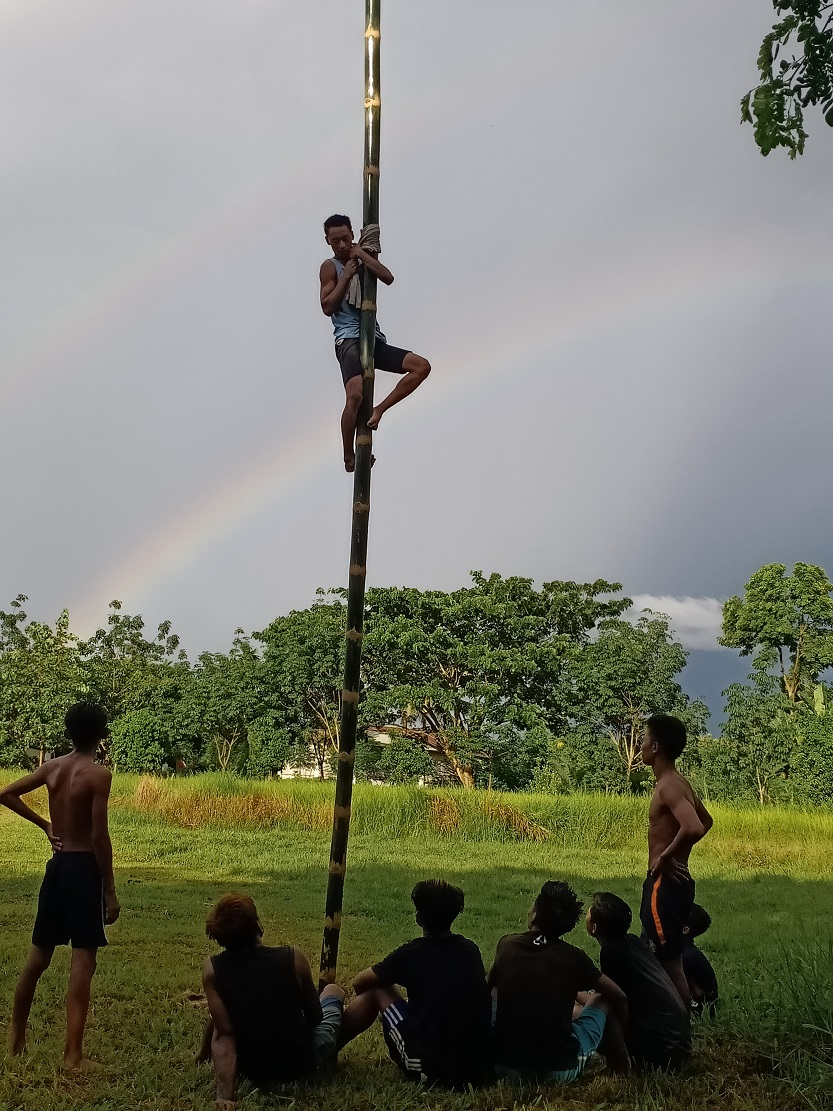 Open Oiled Bamboo Climbing competition