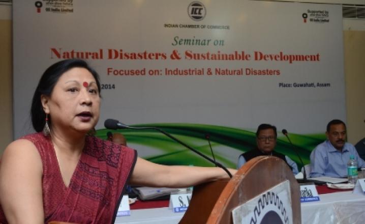 Nandita Hazarika Deputy Secretary Assam State Disaster Management Authority during the ICC seminar on Natural Disaster & Sustainable Development in Guwahati, Saturday.