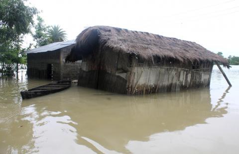 Flood affected Dibru-Saikhowa National Park