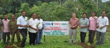 Forest Officials on World Environment Day planting seedlings