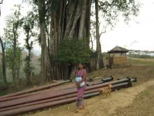 Stockpile of electric posts for Rajiv Gandhi Rural Electrification Scheme have been for months at Upper Lampi