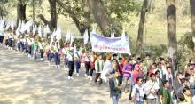 Mech-Kachari festival 2013